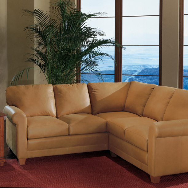 365 Sectional - Leather
